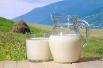 Kada je vreme za uvođenje kravljeg mleka u ishranu?