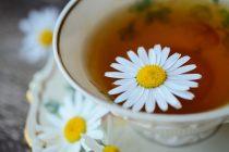 Koje čajeve beba sme da pije?