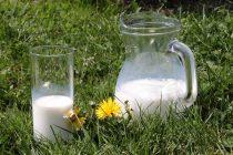 Zašto je kozije mleko zdravo?