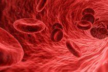Šta su matične ćelije i zašto se čuvaju?
